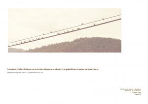 taller-golondrinas-001